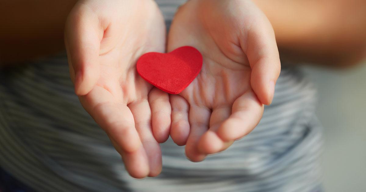 Multiple Sclerosis Charities